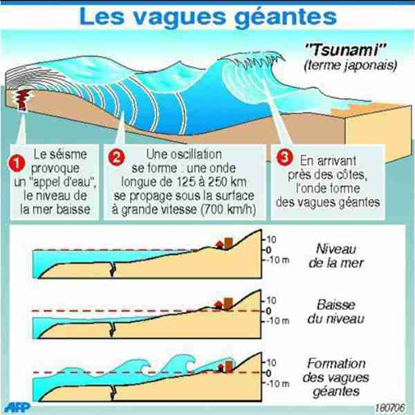 formationdetsunami.jpg